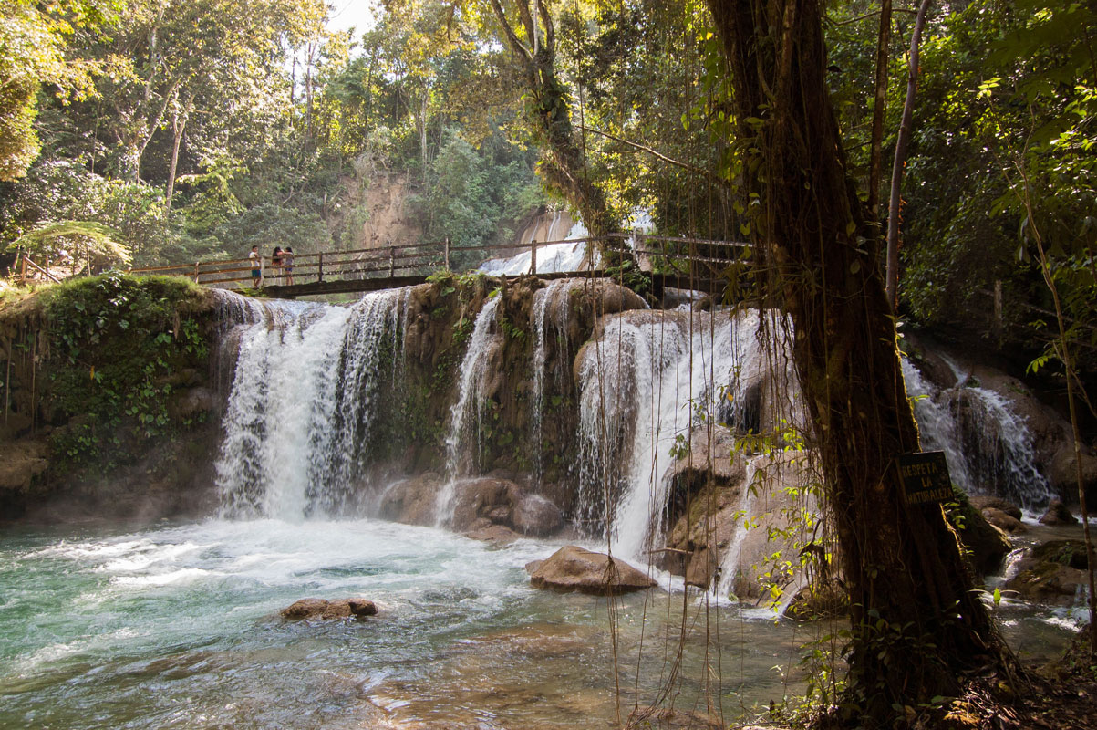 tours_chiapas_bonampak_palenque_guias_en_chiapas_selva_lacandona_mayas_lacandones_ecoturismo_cascada_de_las_golondrinas_nueva_palestina_02