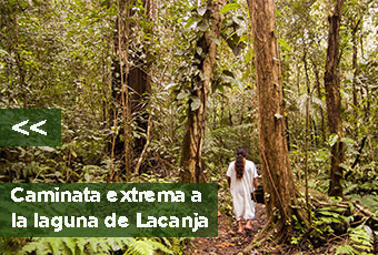 tours_chiapas_bonampak_yaxchilan_palenque_guias_en_chiapas_selva_lacandona_mayas_lacandones_caminata_extrema_boton_izquierdo