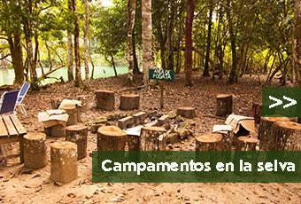 tours_chiapas_bonampak_yaxchilan_palenque_guias_en_chiapas_selva_lacandona_mayas_lacandones_campamentos_boton