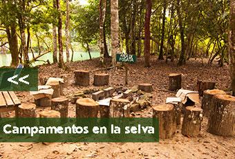 tours_chiapas_bonampak_yaxchilan_palenque_guias_en_chiapas_selva_lacandona_mayas_lacandones_caminata_extrema_boton