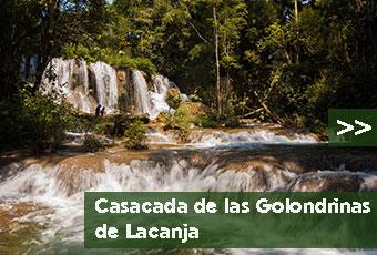 tours_chiapas_bonampak_yaxchilan_palenque_guias_en_chiapas_selva_lacandona_mayas_lacandones_cascada_de_las_golondrinas_de_lacanja_boton