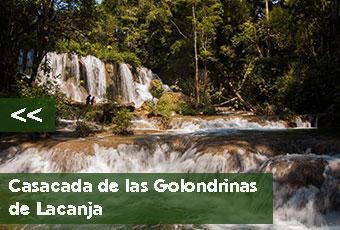 tours_chiapas_bonampak_yaxchilan_palenque_guias_en_chiapas_selva_lacandona_mayas_lacandones_cascada_de_las_golondrinas_de_lacanja_izquierda_boton