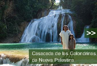 tours_chiapas_bonampak_yaxchilan_palenque_guias_en_chiapas_selva_lacandona_mayas_lacandones_cascada_de_las_golondrinas_de_nueva_palestina_boton