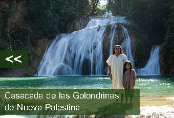 tours_chiapas_bonampak_yaxchilan_palenque_guias_en_chiapas_selva_lacandona_mayas_lacandones_cascada_de_las_golondrinas_de_nueva_palestina_izquierda_boton