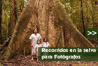 tours_chiapas_bonampak_yaxchilan_palenque_guias_en_chiapas_selva_lacandona_mayas_lacandones_recorridos_para_fotografos