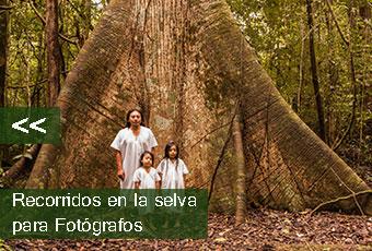 tours_chiapas_bonampak_yaxchilan_palenque_guias_en_chiapas_selva_lacandona_mayas_lacandones_bonampak_boton