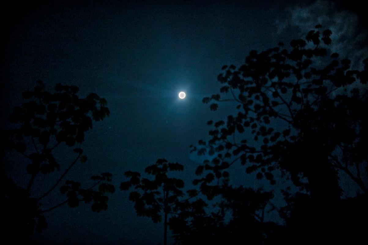 tours_en_chiapas_bonampak_yaxchilan_palenque_guias_en_chiapas_selva_lacandona_mayas_lacandones_aventura_caminata_nocturna