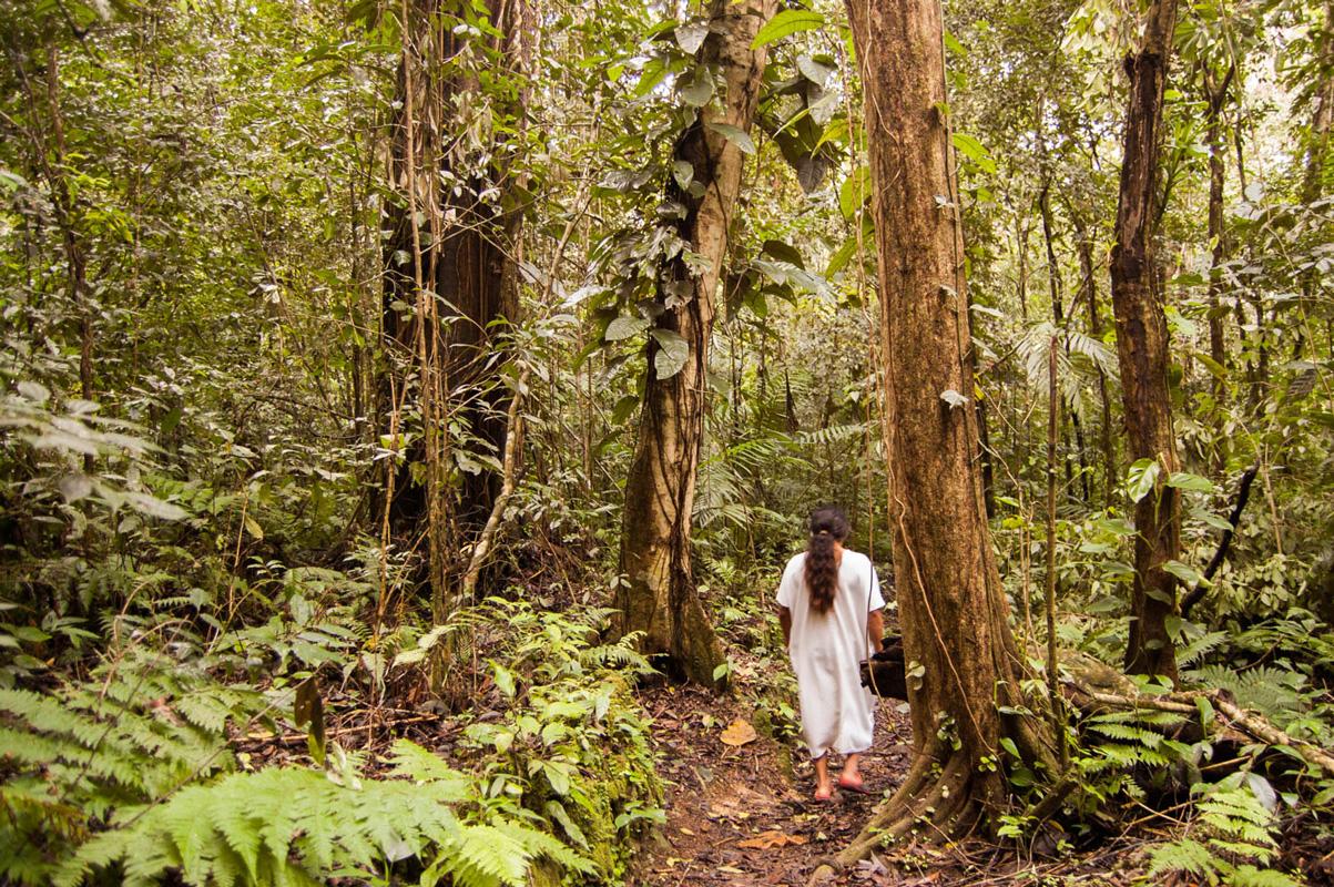 tours_en_chiapas_bonampak_yaxchilan_palenque_guias_en_chiapas_selva_lacandona_mayas_lacandones_aventura_caminatas_extremas_en_la_selva_lacandona